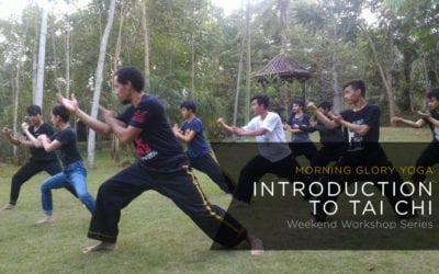 Introduction to Tai Chi Weekend Workshop Series
