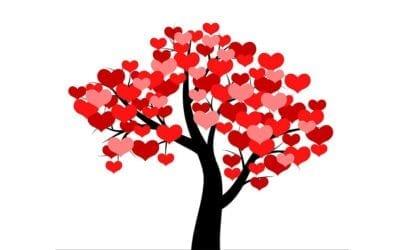 Free Friday, Partner Yoga, on Valentine's Day!
